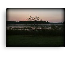 Early Morning Lakeside Canvas Print
