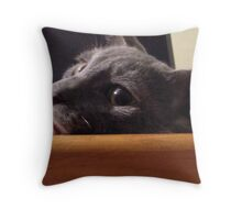 Restful thinking.. Throw Pillow