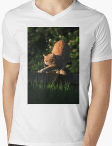 Ginger cat stretching on garden fence Mens V-Neck T-Shirt
