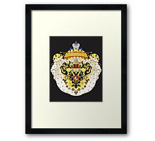 coat of arms three Framed Print