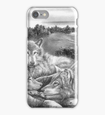 Desperadoes iPhone Case/Skin