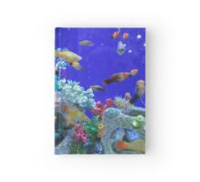 Blue Fish Tank  Hardcover Journal