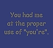 """You had me at the proper use of """"you're"""". Comic Sans by SushiSarah"""