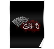 Winter Is Coming - House Stark Poster
