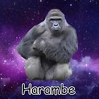 Harambe  by IzzyIzz