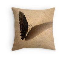 Butterfly Mirror in Shadow Throw Pillow