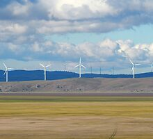 Capital Wind Farm (Australia) by ozscottgeorge