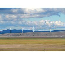 Capital Wind Farm (Australia) Photographic Print
