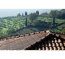 Tuscan Trees and Valley-Petrolo Photographic Print