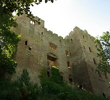 Ludlow Castle Ruins by Gillian Marshall