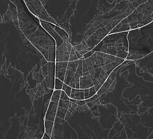 Grenoble, France Map. (White on black) by Graphical-Maps