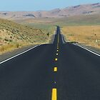Oregon State Route 78 - Harney County To Malheur County, OR by Rebel Kreklow