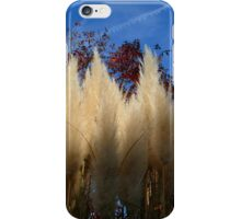 Pampas Tassels Against a Sapphire Sky iPhone Case/Skin