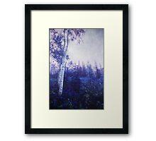 Wander trough the foggy forest Framed Print