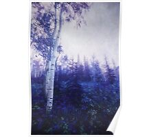 Wander trough the foggy forest Poster