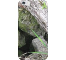 Hidden Mystery iPhone Case/Skin