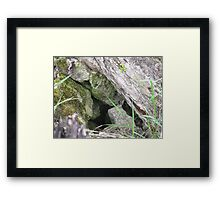 Hidden Mystery Framed Print