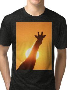 Giraffe Silhouette - Golden Sunset African Wildlife Tri-blend T-Shirt