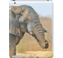 Elephant Bull - Beautiful Mud - African Wildlife iPad Case/Skin