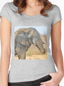 Elephant Bull - Beautiful Mud - African Wildlife Women's Fitted Scoop T-Shirt