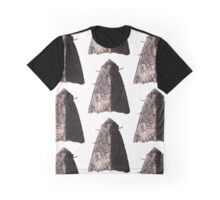 Lacinipolia Stricta (half-lit) B Graphic T-Shirt