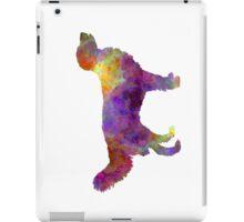 Drentsche Partridge Dog in watercolor iPad Case/Skin