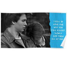 Fell In Love Slowly and Then All at Once Poster