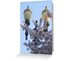 Street Lamps and Cherry Blossoms Greeting Card