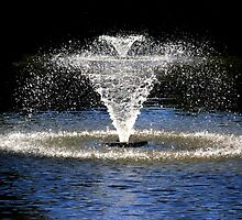 Fountain in Quarry Park, Shrewsbury by turniptowers