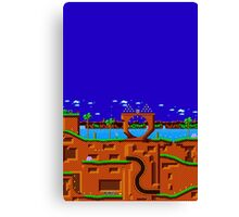 SONIC STAGE Canvas Print