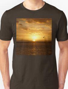 **Sun Rise Inspection Head*  Unisex T-Shirt