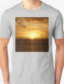 **Sun Rise Inspection Head*  Unisex T-Shirt