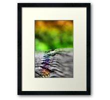 abstract wooden rail Framed Print