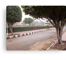 A narrow street running through a park with trees and a green hedge Canvas Print