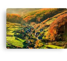 light  beam falls on hillside with autumn forest in mountain Canvas Print