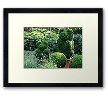 topiary  of the garden  Framed Print