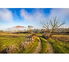rural landscape with road through agricultural meadow in fog Photographic Print