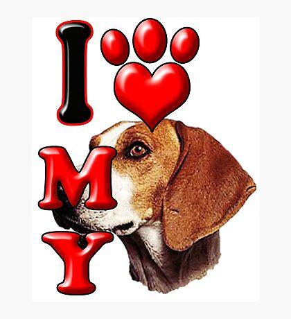 I Love My Foxhound Photographic Print