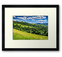 landscape with fields and  forest on hillside Framed Print