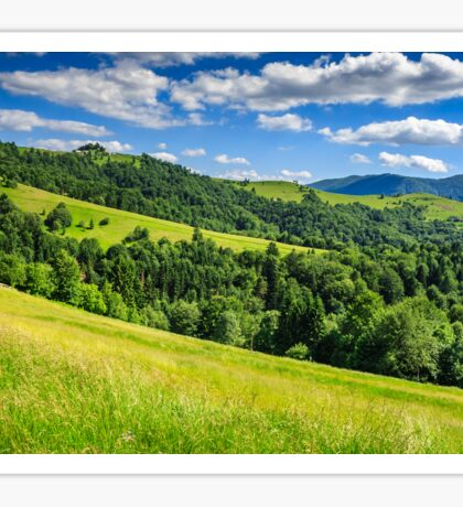 landscape with fields and  forest on hillside Sticker