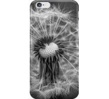 And the wind came... iPhone Case/Skin