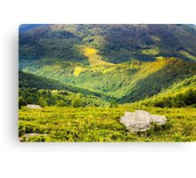 hillside with stones in high mountains Canvas Print