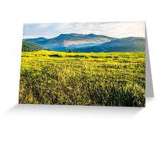rural field near forest at hillside Greeting Card