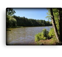 Two Ponds Trail Summer Morning Canvas Print