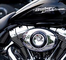 Harley Davidson by davidlichtneker