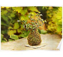 Unusual flower pot Poster