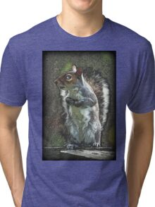 Squirrel Stance Tri-blend T-Shirt