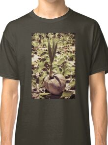 Sprout of coconut tree Classic T-Shirt