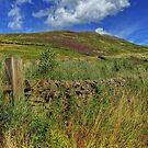 Scottish Scenery by 242Digital