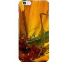 Cute lil critter iPhone Case/Skin